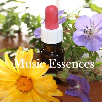 Music Essences